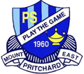 Mount Pritchard East Public School - Play The Game